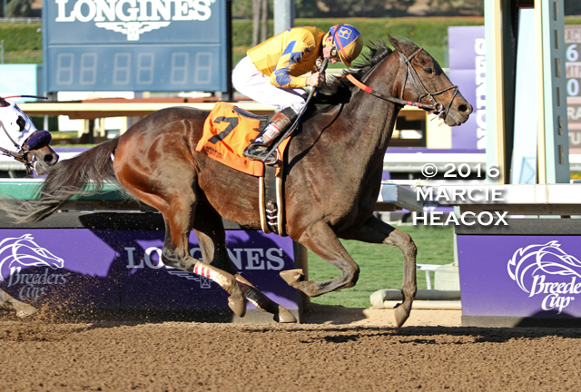 Imperative wins the Big Bear Stakes