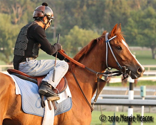 Blind Luck and Rafael Bejarano