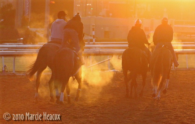 Ponying at Sunrise